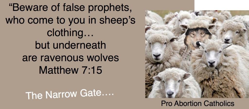 AGM_The Narrow Gate Matthew 7-15 (1)